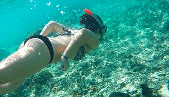 Snorkeling One Day Tour To Gili Trawangan