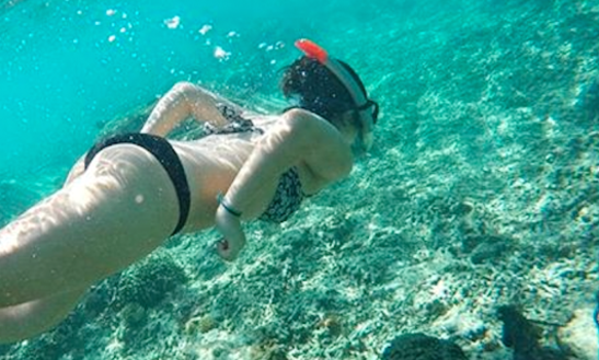 Snorkeling One Day Tour To Gili Trawangan