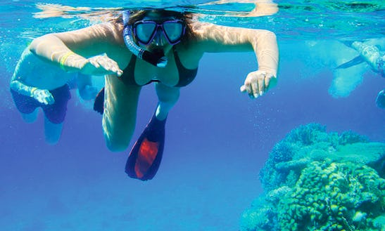 Snorkeling Tour In Simpson Bay