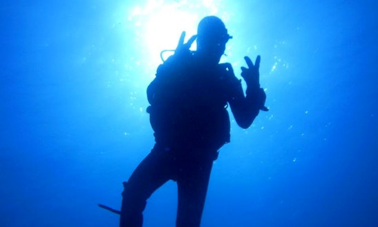 Diving And Diving Courses In Palermo