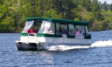Wildlife Tours in Holderness, New Hampshire