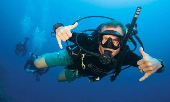 Scuba Diving Trips And Courses In South Africa