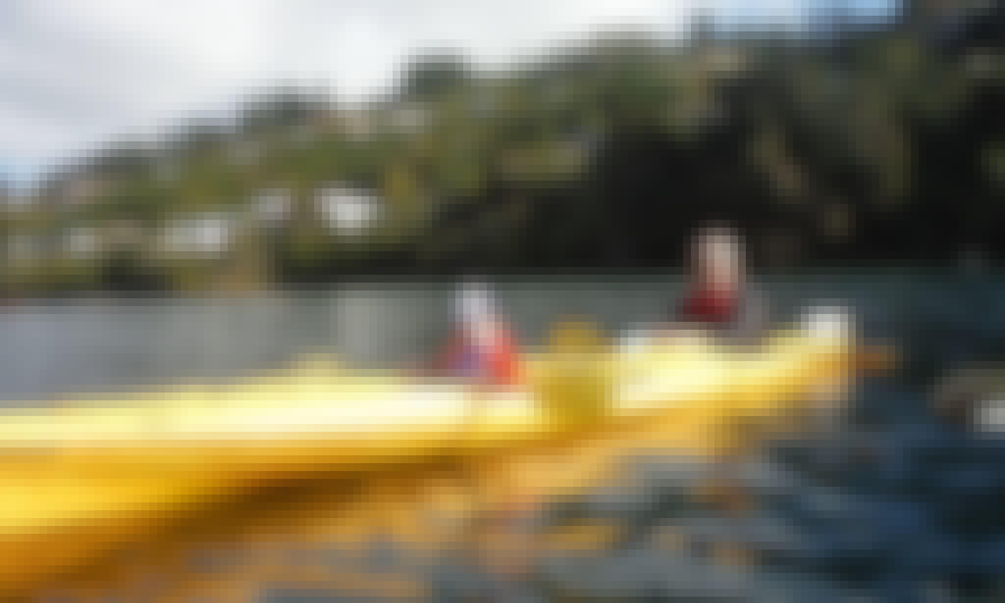 Māori Rock Carvings Kayak Tour in Taupo, New Zealand