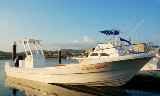 33 Feet, Light Tackle, Jigging, Big Game And And Fly Fishing Charter