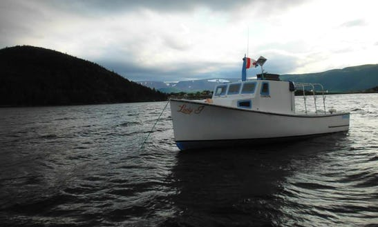 Trawler Fishing Charters In Division No. 9 Subd. A, Canada