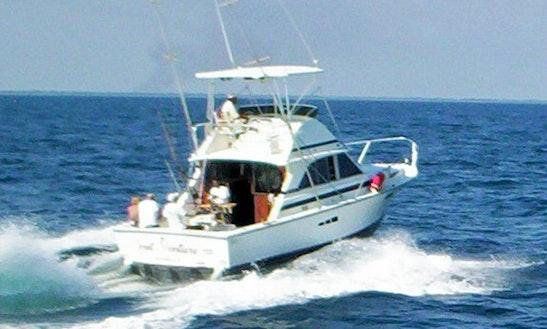 Fishing Trip Charter