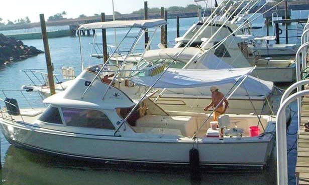 "Guided Fishing Trip Boat ""Tranquility Bertram"" In Guatemala"
