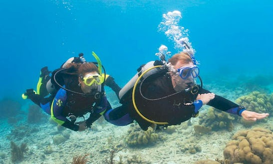 Diving Trips In Favignana