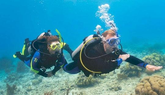 Diving Trips In Favignana