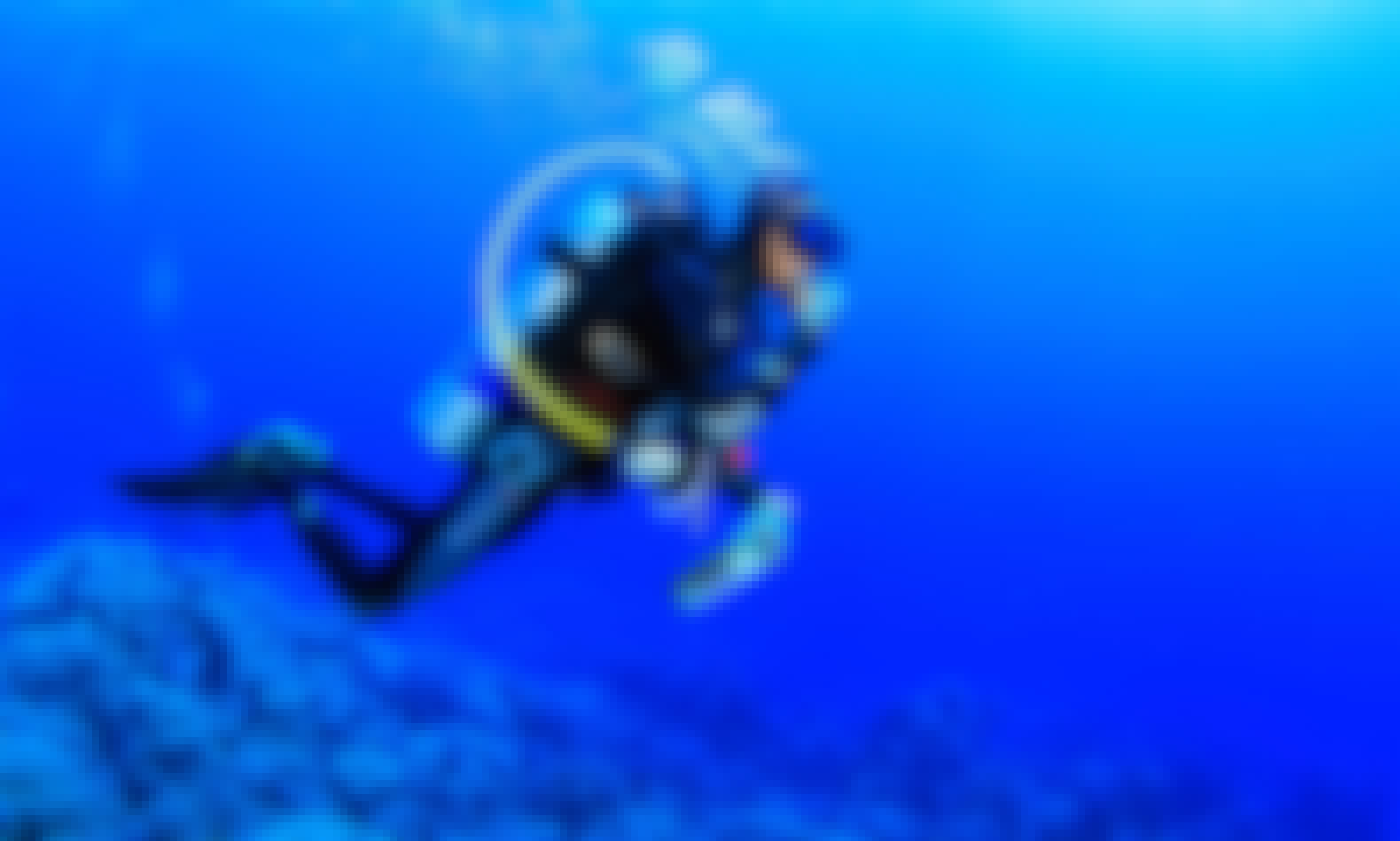Diving Courses in Xinyi District
