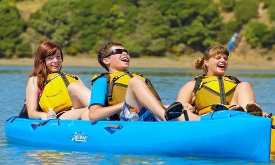 River Lures Kayaking Trip Or Tandem Kayak Rental In Grand Rapids Township, Ohio