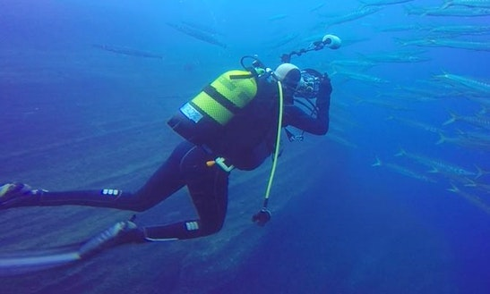 Diving Trips & Courses In Betancuria