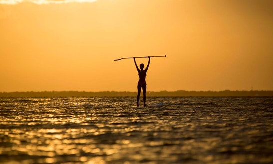 Paddleboard & Surf Lessons & Tours In Honolulu, Hawaii