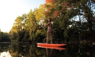 Stand Up Paddleboard Rental in Lakeshore Road