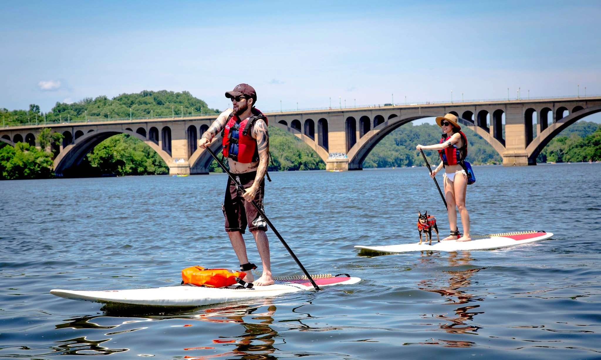 Stand Up Paddleboards >> Stand Up Paddleboarding In Alexandria