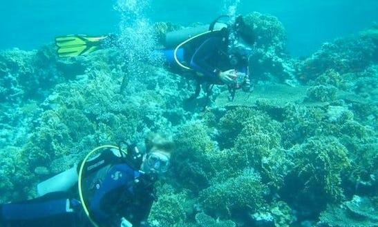 Diving In Fuengirola