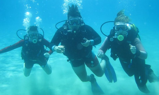 Diving Trips & Courses In Pernera
