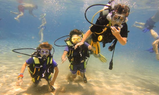 Diving Trip & Courses In Paphos