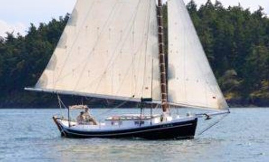 43' Sightseeing Charter In Eastsound, Washington