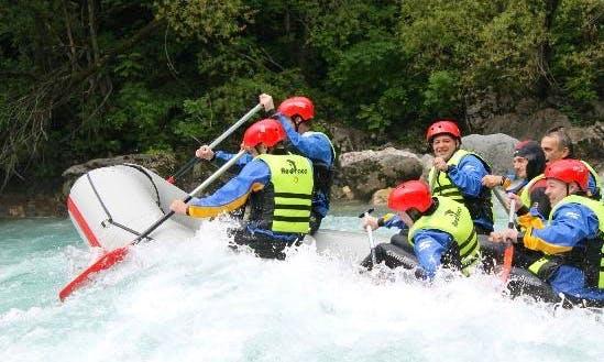 Experience Rafting on Tara River in Kotor, Montenegro
