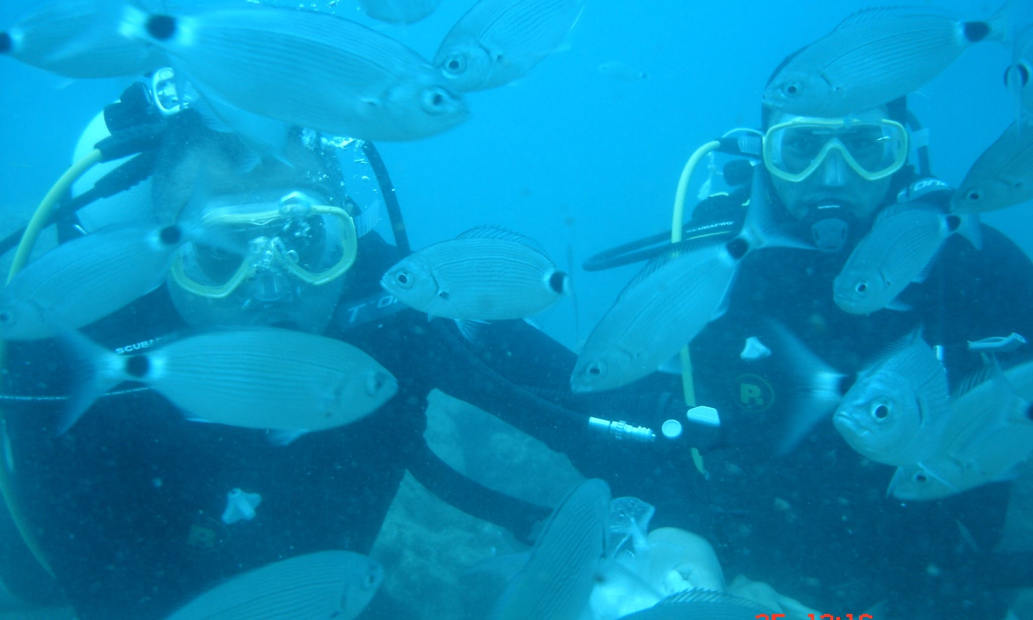 Diving Trips in Karabuk Koyu, Turkey