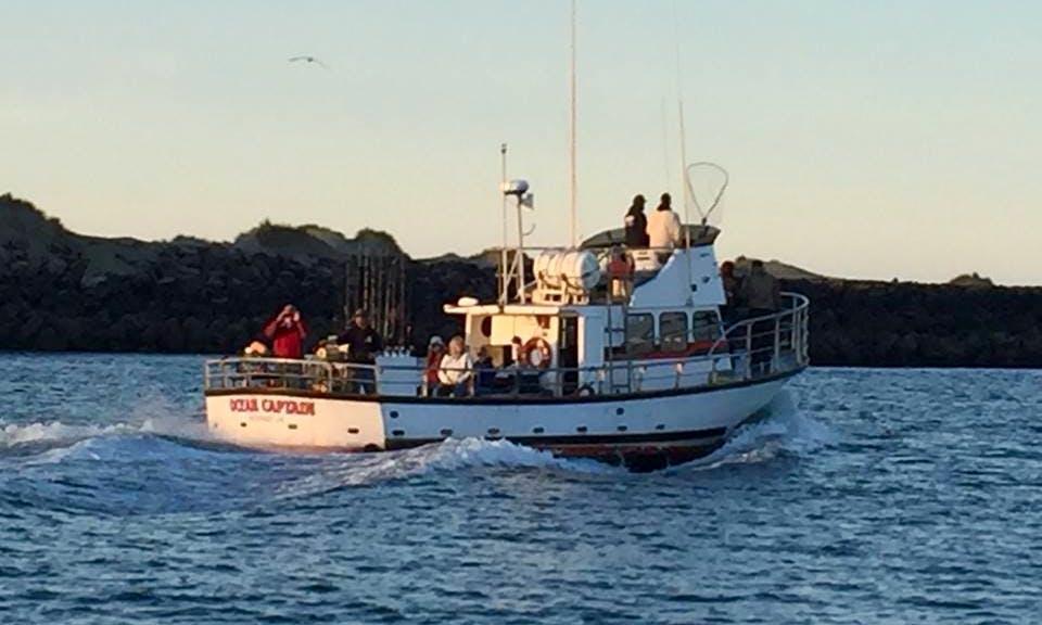 """43' Fishing Trips Charter """"Ocean Captain"""" In Newport"""