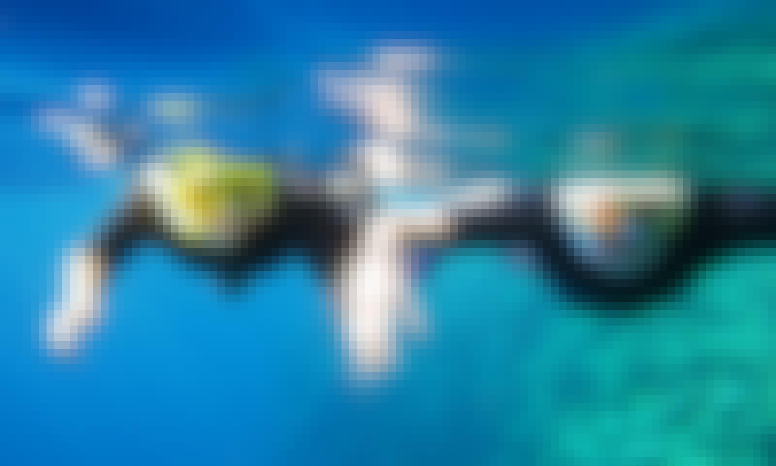Snorkeling Tours in Alghero, Italy