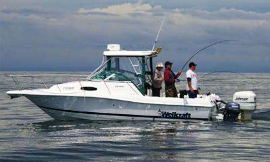 22' Cuddy Cabin Fishing Charters In Vancouver, Canada