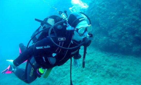 Daily Diving Trips & Courses In Chania