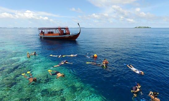 Snorkeling Trips In Halaveli, Maldives