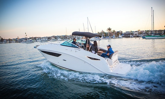 New 2015 Sea Ray 260 Yacht Charter In Newport Beach