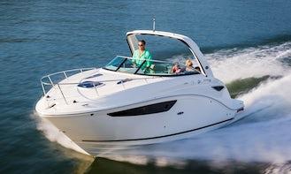 27' Sea Ray Sundancer Motor Yacht - Captain & Fuel Included