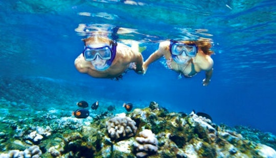 Snorkeling Tours And Courses In Golfo Aranci, Italy