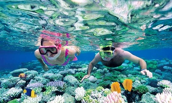 Snorkeling Tours In Zanzibar