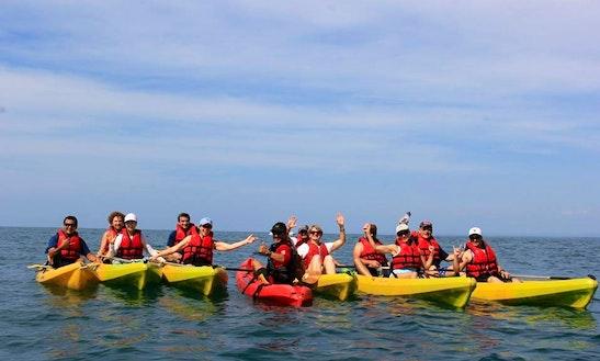 Kayak Rental & Trips In Quepos, Costa Rica