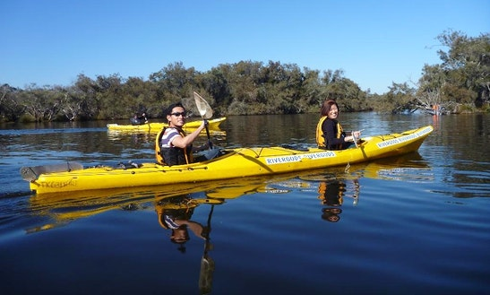 Double Kayak Tours And Hire In Willetton