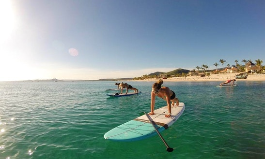 Paddleboard & Surf Rental In Los Barriles, Mexico