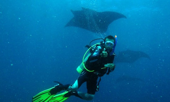 Diving Trips And Courses In Denpasar Selatan