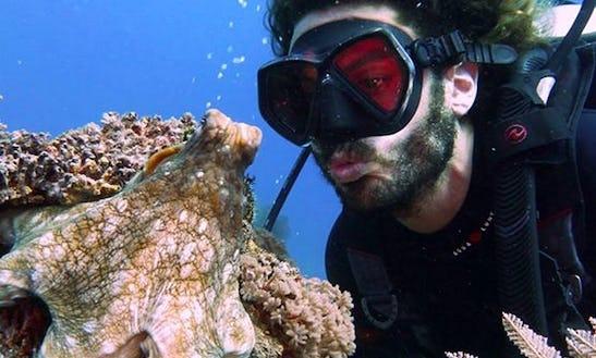 Diving In Gili Trawangan
