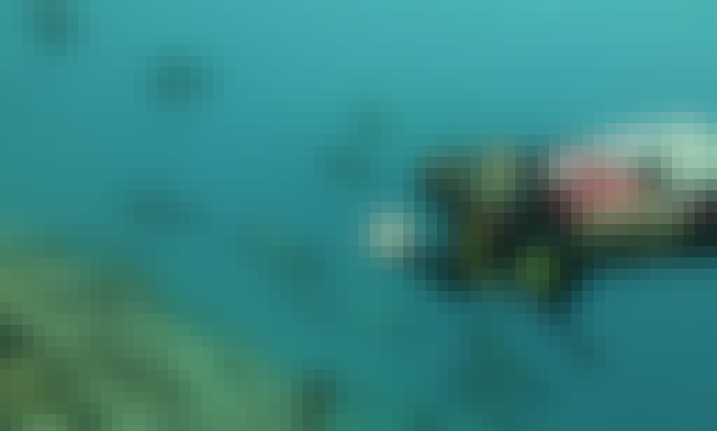 Fun Dive Around the Gili Islands