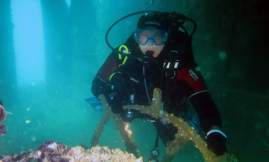 Diving Trips And Courses In Lagos, Portugal