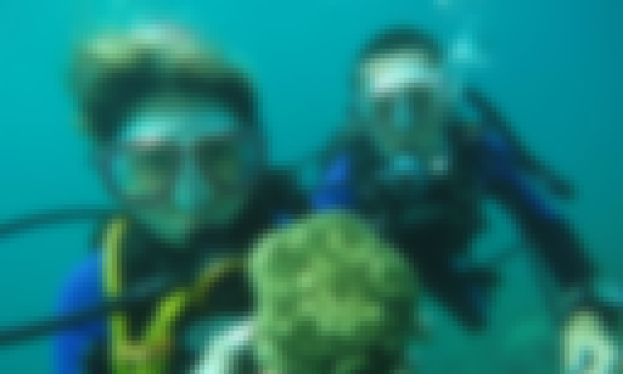 Diving Lessons in New Taipei City