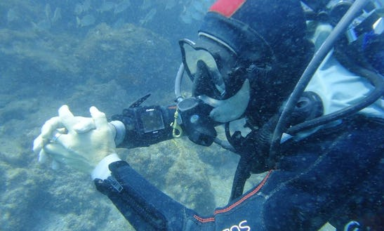 Diving Trips In Santiago Del Teide, Spain