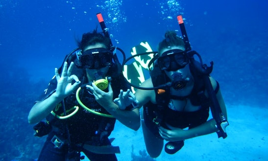 Diving Trips & Courses In Monte Argentario