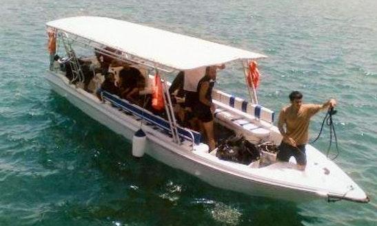 Passenger Boat Fishing Charter In Dibba Al Fujairah