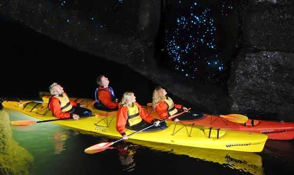 Tauranga Evening Glow Worm Double Kayak Tour