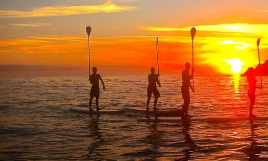 Experience The Unforgettable Sup Adventure In Saint Davids, United Kingdom