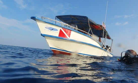 Scuba Diving Lesson And Dive Trips In Malaysia With Nor Bani