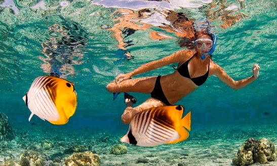 Snorkeling On Kealakekua Bay, North Kona