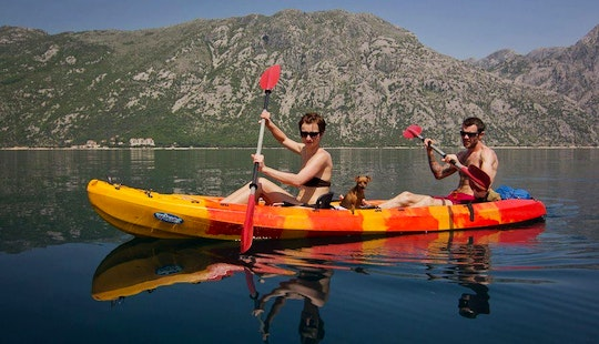 Double Kayak Tours And Rental In Kotor, Montenegro